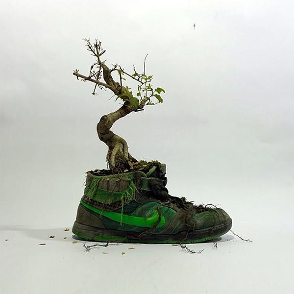 Nike_bonzaii