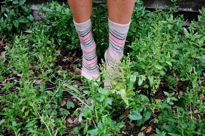 Stance-Socks-Holiday-15-collection-Sara-Sani-06