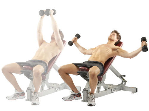 incline-db-fly-chest-1504-de