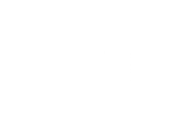 Wool And The Gang