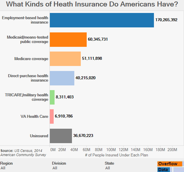 What Kinds of Heath Insurance Do Americans Have