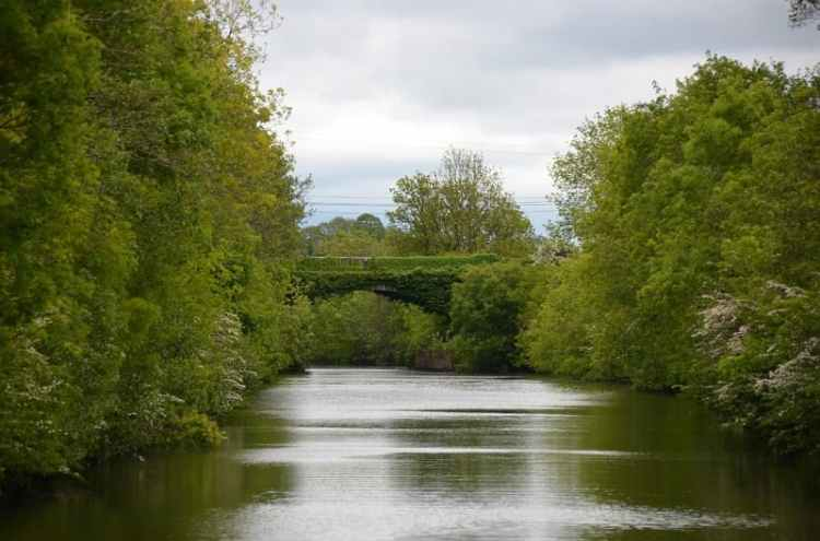Picture of River Shannon