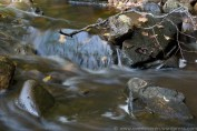 vand_7.jpg