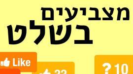 לוגו סקרים