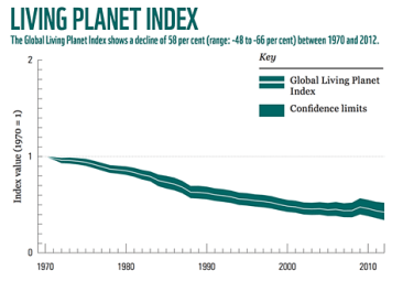 The Change of the Global Living Planet Index overt time. It shows, that the size of vertebrate populations (mammal, bird, reptile, fish and amphibian populations) declined of 58% since 1970, in little more than 40 years. It means a frightening, 2% average annual decline. (WWF Living Planet Index, 2016)