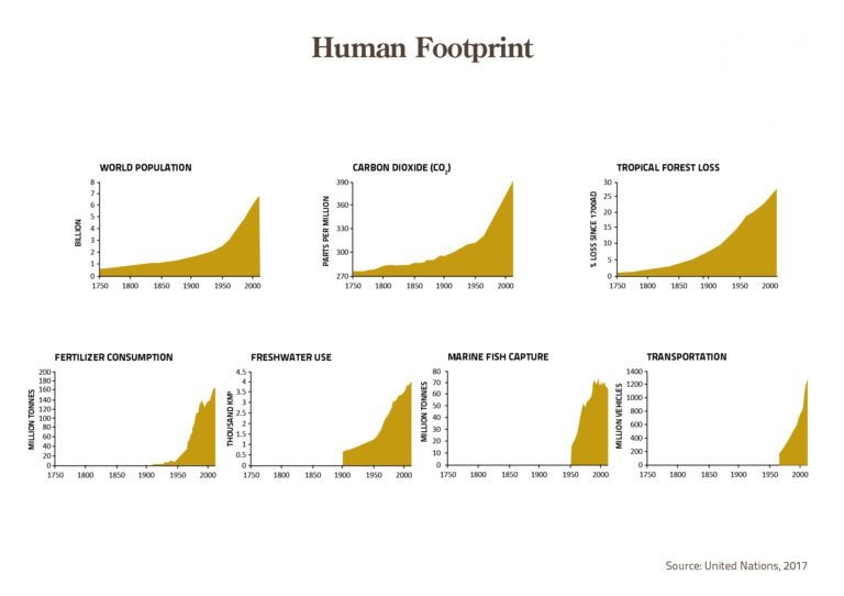 inkedhuman-footprint_li