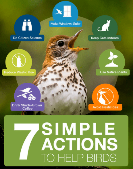 7 actions