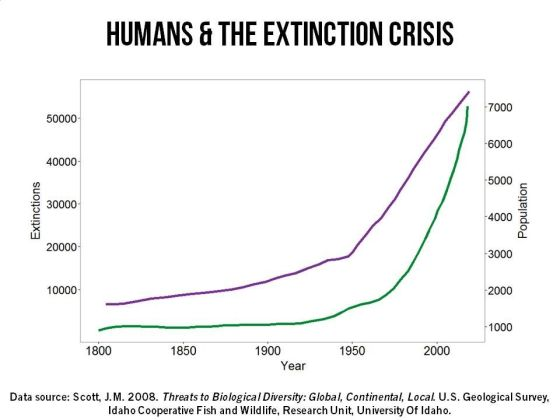 Human population vs extinctions