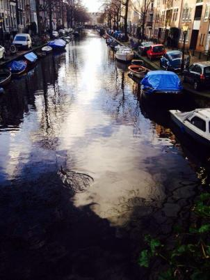 Canals after the rain