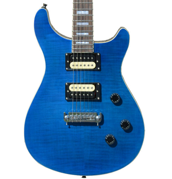 Fishbone Guitar 6 string Vine PRS style electric solid body Blue