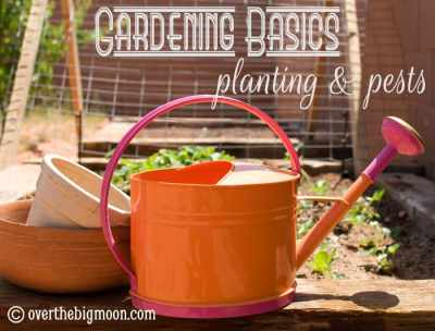 Gardening Basics - Planting and Pests! Such great information here! www.overthebigmoon.com!