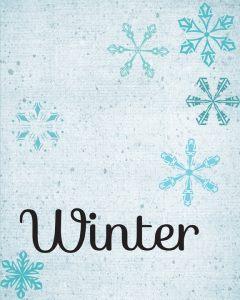 WinterTexture