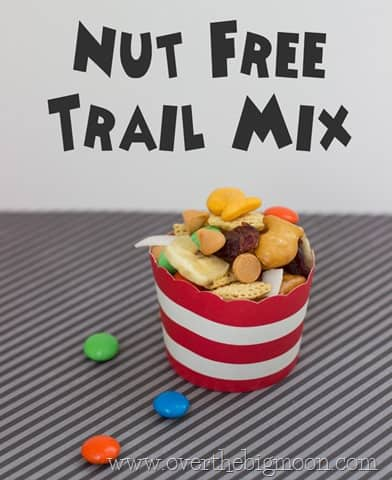 disneyland trail mix15