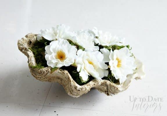 sea-shell-flowers