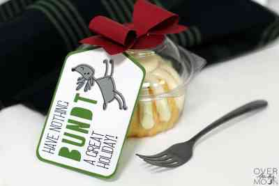 Quick and fun gift idea for Christmas! From www.overthebigmoon.com!