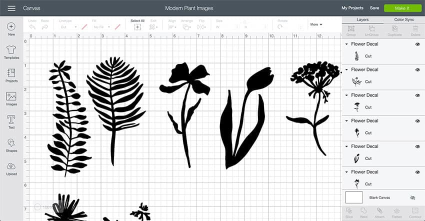 Modern Plant and Flowers Design Space File