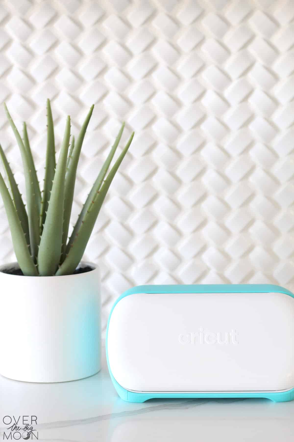 Cricut Joy machine closed on white countertop with an aloe plant next to the machine.