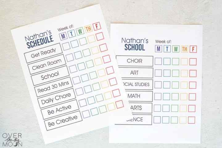Printed Daily Schedule and School Schedule Printables on a textured white background.