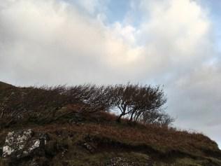 Fairy Glen, Isle of Skye, Scotland