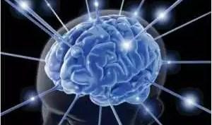 creier legaturi