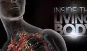 inside the living body - documentar national geographic