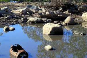 Ventura River Clean-Up Event