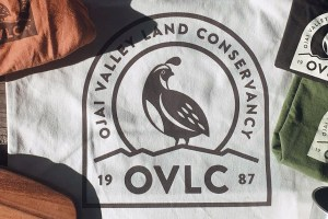 OVLC Store