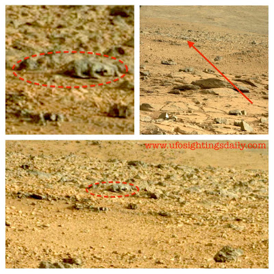 ET, UFO, UFOs, sighting, sightings, alien, aliens, rat, lizard, rodent, Mars, Rover, curiosity, May, 2013, life, biology, news, discovery, Top Secret, NASA, classified, information, hackers, black hat,