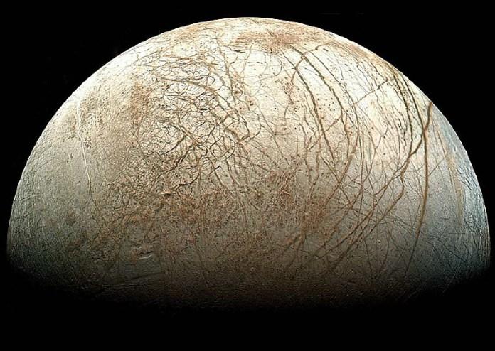 Que vida alienígena poderia viver no mega oceano de lua de Júpiter