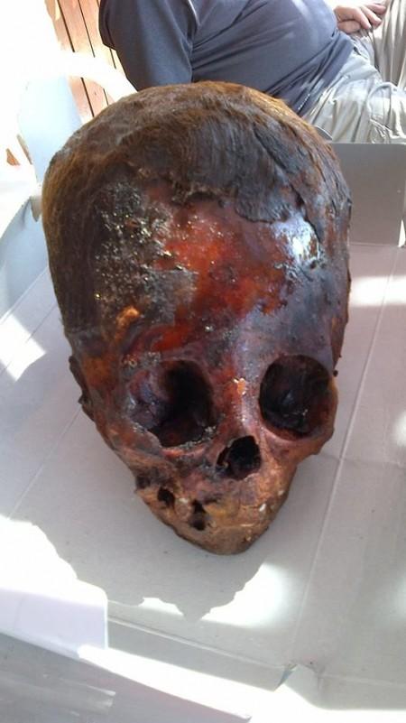 Baby-Elongated-Skull-From-Peru-450x801