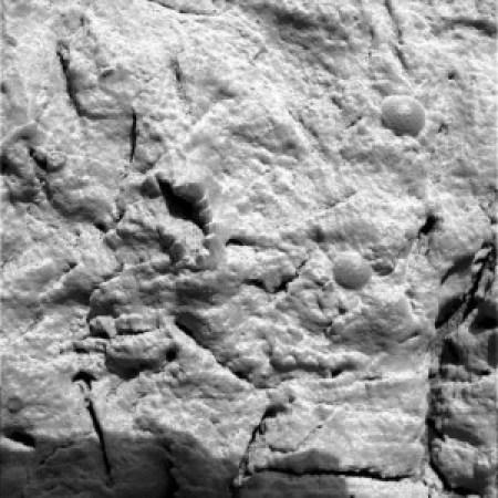 evidência de vida em Marte