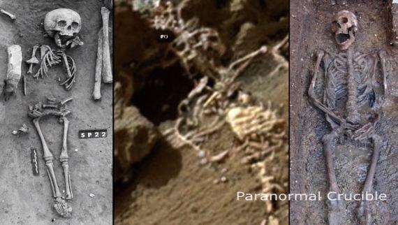 Comparação do que foi encontrado na foto de Marte, com esqueletos na Terra.