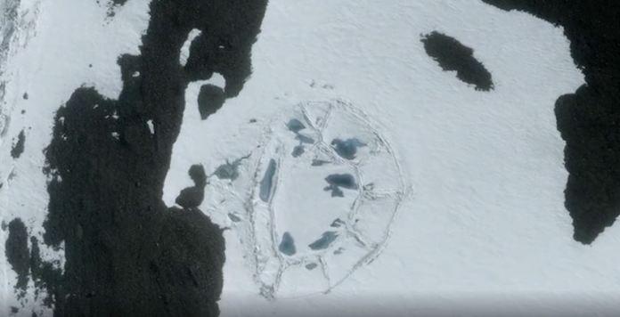 Continente Antártico - estrutura artificial