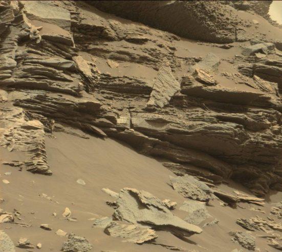 possível vida vegetal em Marte