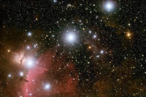 quantas raças alienígenas podem existem