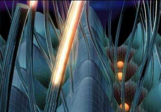 Efeitos da quarta dimensão espacial