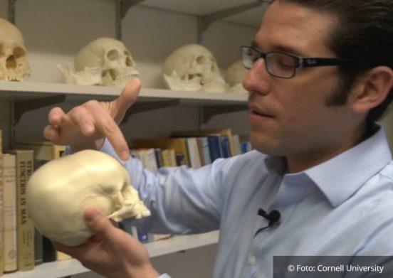 """o porquê de tantos """"crânios alienígenas"""" entre os incas"""