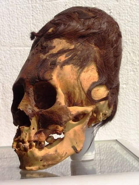 Crânios alongados de Paracas não são nativos da América, mostra resultado de DNA 1