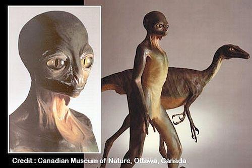 Dinossauros inteligentes saíram da Terra há milhões de anos 1