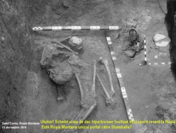 a realidade dos esqueletos humanoides gigantes