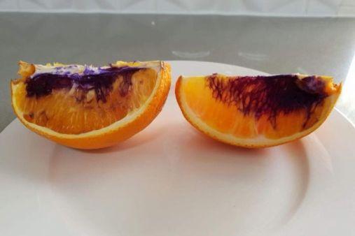 solucionado o mistério da laranja que ficou roxa
