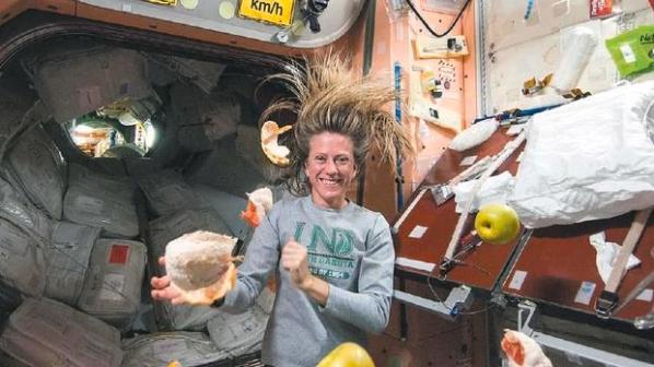 bactérias e fungos em toda a Estação Espacial