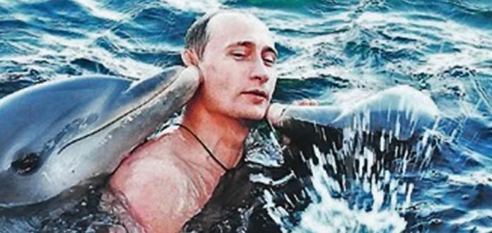 soldados russos aprenderam telepatia com os golfinhos