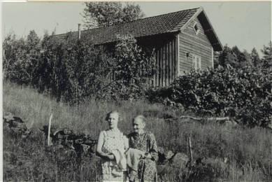 Bildet viser hovedhuset på Halland sett fra nordsiden. Halland var opprinnelig en husmannsplass under Mushom, men ble senere en selvstendig gård. Har de siste årene tilhørt Lian-familien, men det er mange andre som også har bodd her i kortere eller lengre perioder. Olav Lian solgte gården til Jan Øvland som er eier nå (2008), og slik er den fortsatt i Lian-slekten. I forgrunnen Berta Lian og Mari Øvrebø.