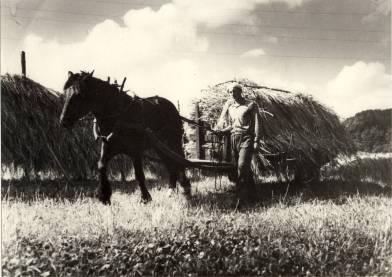 Torjus Reiersdal kjører inn tørket korn på gården sin på Reiersdal.