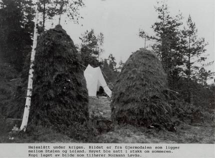 Bildet er fra Gjermodalen som ligger mellom Stølen og Loland. Høyet ble satt i stakk om sommeren og hentet hjem til gården om vinteren. Som en ser flyttet en til stedet hvor høyet ble slått og bodde i telt der så lenge slåtten varte. (Se også forrige bilde.)