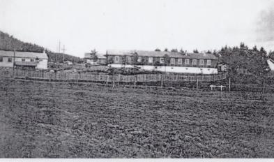 Kjøkkenbrakke som sto i tyskerleiren på Homme, bygningen brant ned på 50 tallet. Lengst til Venstre holdt framhaldskolen til en tid, i midtdelen var det trevarefabrikk og til høyre en leilighet. I kjelleren var det badstue.