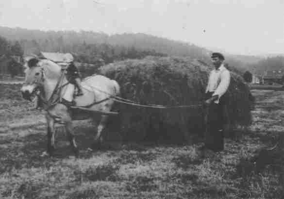 Nok et bilde av høyonn. Gutten som er så heldig og får sitte på hesteryggen er Bernt Ilebekk og det er faren Alfred som styrer hesten. I bakgrunnen kan en skimte bedehuset på Homstean og helt til høyre gården til O.S.Ilebekk. (Ca. 1939)