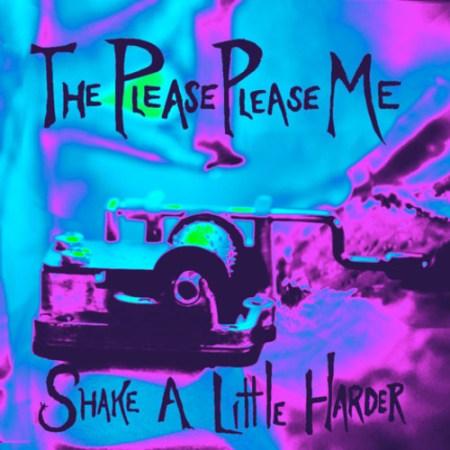 the-please-please-me-album-cover