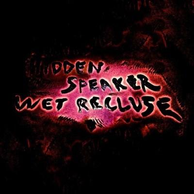 hidden-speaker-wet-recluse
